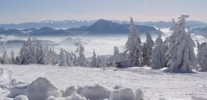 Choc in Slowakei