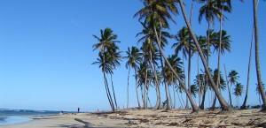 Wolkenloser Himmel am Strand der Dominikanischen Republik in Dominikanische Republik