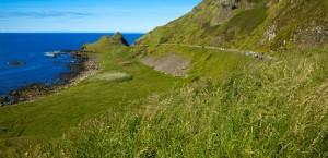 Der Giant's Causeway in Nordirland in Nordirland
