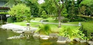 Der Yoyogipark in Tokio, Japan in Tokio