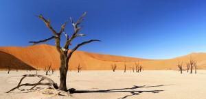 Typische Wüstenlandschaft in Namibia in Namibia